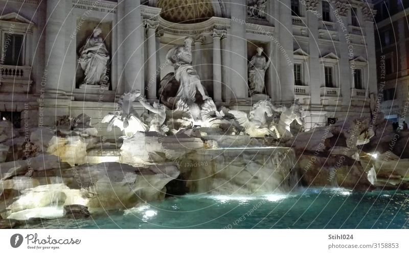 Fontana di Trevi II Style Joy Happy Vacation & Travel Tourism Sightseeing City trip Artist Work of art Sculpture Rome Italy Capital city Places