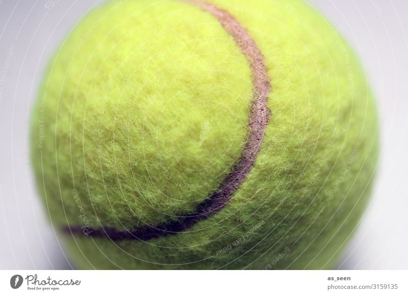 Tennis ball Lifestyle Style Design Sports Ball sports Tennis court Tennis tournament Sporting Complex Sporting event Lie Esthetic Authentic Cool (slang) Retro