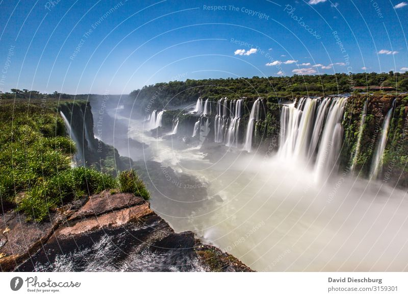 Iguazu Vacation & Travel Tourism Adventure Sightseeing Summer vacation Environment Nature Landscape Plant Animal Sky Clouds Spring Beautiful weather Tree Forest