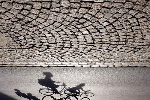 Shadow play III Sports Work and employment Münster Germany Town Transport Rush hour Road traffic Cycling Pedestrian Street Lanes & trails Bicycle Driving Going