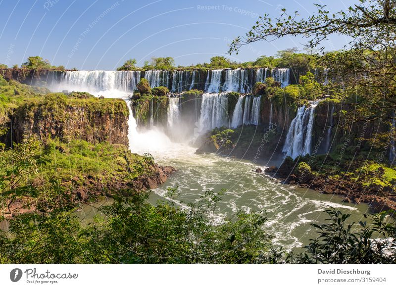 Iguazu Vacation & Travel Tourism Adventure Expedition Environment Nature Landscape Plant Animal Cloudless sky Beautiful weather Tree Virgin forest Waves