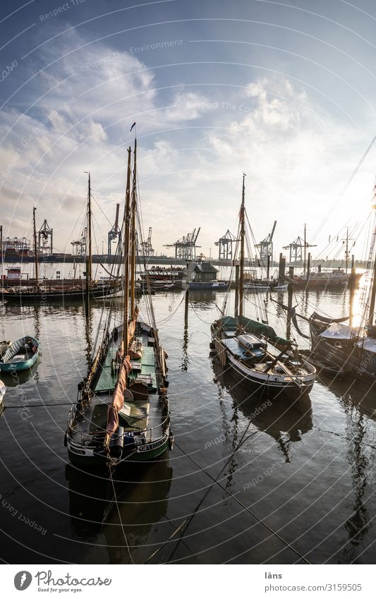 Readiness -1500 Weather Beautiful weather River Elbe Navigation Sailboat Maritime Beginning Stagnating Town Lanes & trails Harbour Hamburg sailboats