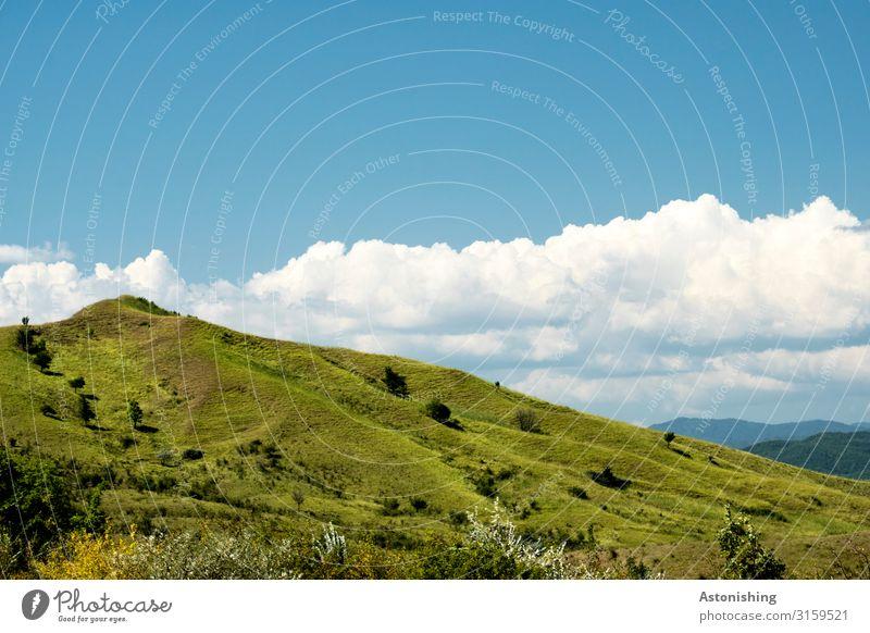 green hill Environment Nature Landscape Plant Air Sky Horizon Summer Weather Beautiful weather Grass Bushes Meadow Hill Mountain Carpathians Peak Romania Tall