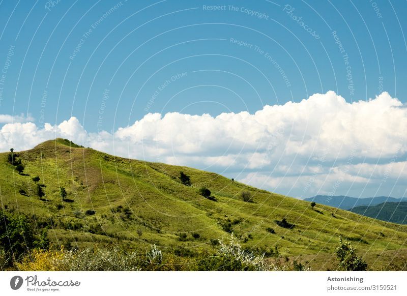 Sky Nature Summer Plant Blue White Landscape Travel photography Mountain Environment Meadow Grass Gray Horizon Weather Vantage point