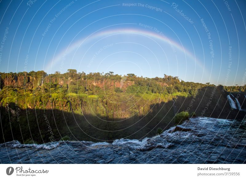 Rainbow at Iguassu Vacation & Travel Tourism Sightseeing Nature Landscape Water Cloudless sky Spring Summer Beautiful weather Plant Tree Forest Virgin forest