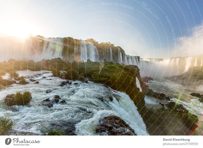 Iguazu Vacation & Travel Tourism Adventure Expedition Environment Nature Landscape Plant Animal Cloudless sky Spring Summer Beautiful weather Waves River