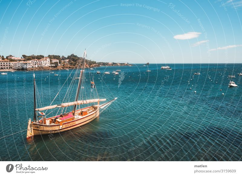 Set sail Landscape Sky Cloudless sky Horizon Spring Beautiful weather Hill Rock Coast Bay Ocean Village Navigation Fishing boat Sport boats Sailboat