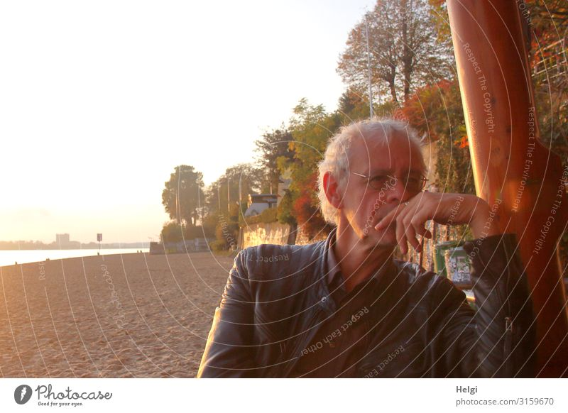 male senior sits thoughtfully in the evening sun on the Elbe beach Human being Masculine Man Adults Male senior Senior citizen 1 45 - 60 years Environment