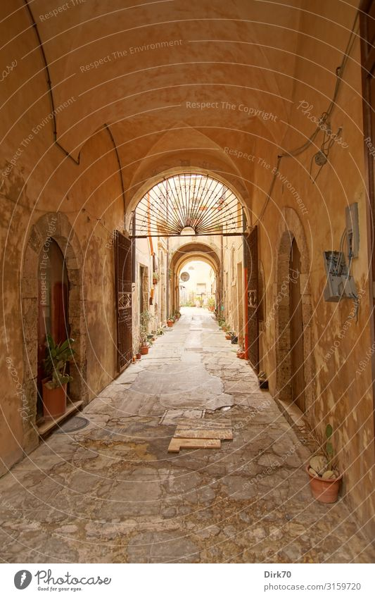 Narrow lane in Siracusa Living or residing Flat (apartment) Syracuse Sicily Italy Town Downtown Old town Deserted House (Residential Structure) Wall (barrier)