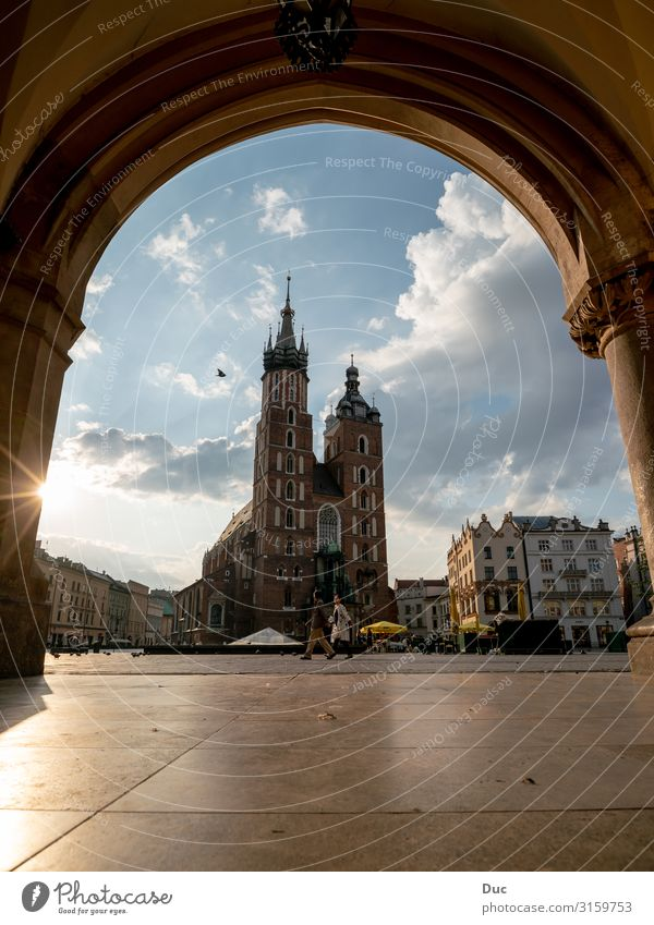 Church of St. Mary in Krakow Lifestyle Shopping Elegant Joy Happy Tourism Trip Sightseeing City trip Couple Church of Our Lady Rynek Glowny Pollen Europe Town