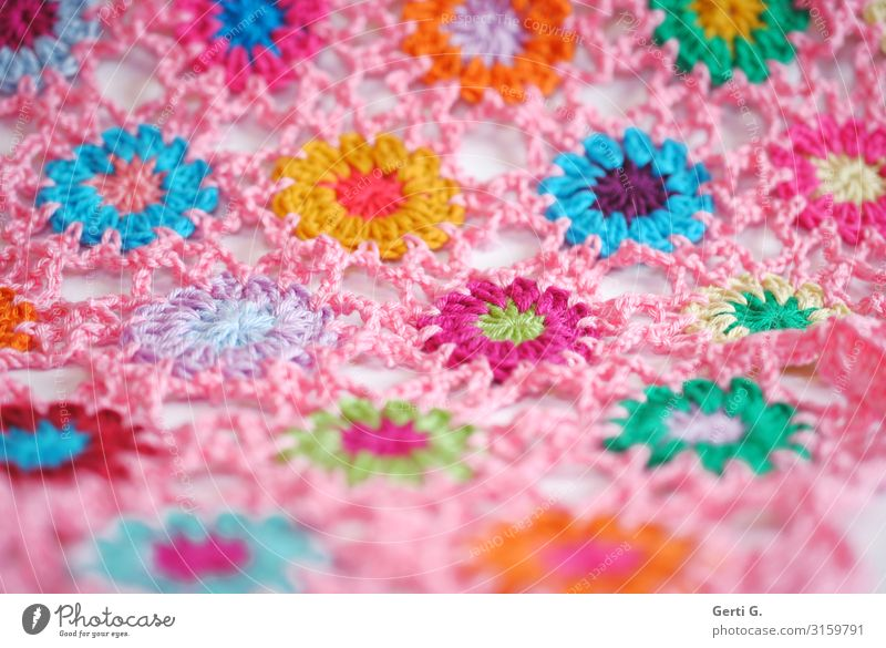 colourful crochet flowers connected with air chains in pink Lifestyle Design Leisure and hobbies Handcrafts Crochet Living or residing Flat (apartment)