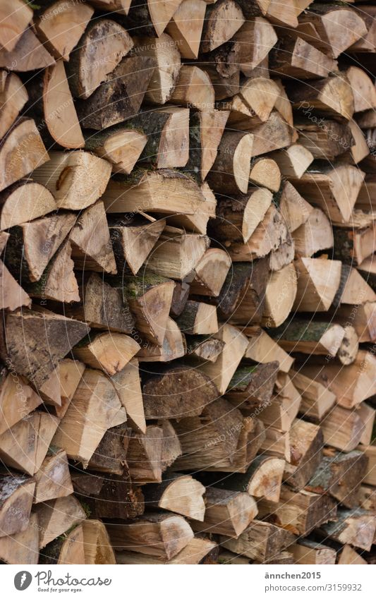 Wood for winter Stove & Oven Heating by stove Forest Nature Stack of wood Firewood Exterior shot Mince Chop Fireside Brown