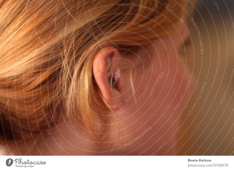 looking - listening - understanding (2) Beautiful Hair and hairstyles Skin Face Healthy Wellness Well-being Contentment Calm Young woman Youth (Young adults)