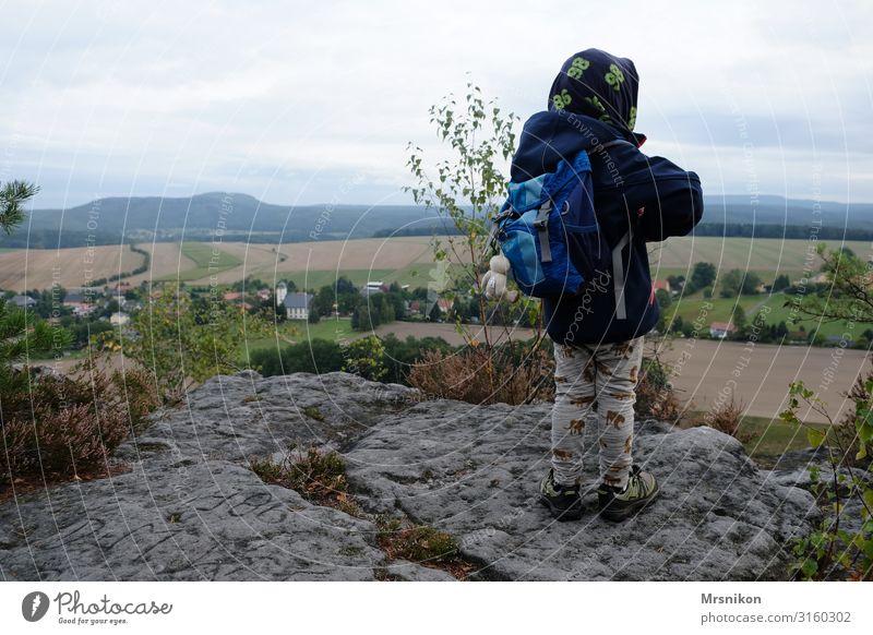 Hiking tour Saxon Switzerland with toddler Saxony Trip Mountain Excursion destination Mountaineering Autumn Autumnal Above Forest Deserted Colour photo Tourism