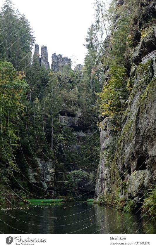 Vacation & Travel Relaxation Travel photography Mountain Tourism Trip Hiking Adventure Bohemian Switzerland Edmundsklamm