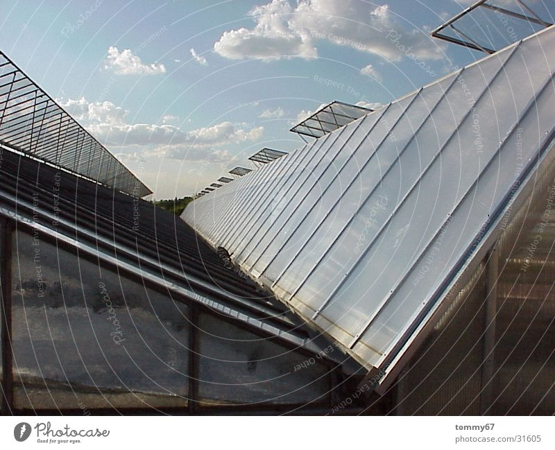 draw clouds Clouds Greenhouse Roof Evening sun Architecture Glass Sky