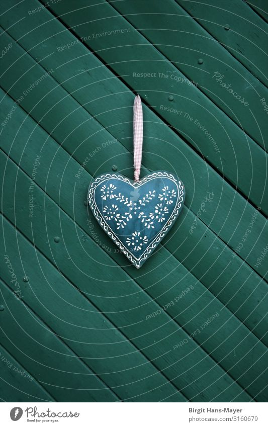 heart Heart Living or residing Kitsch Retro Green Love Romance Idyll Costume Decoration Rural Alpine Colour photo Exterior shot Copy Space bottom