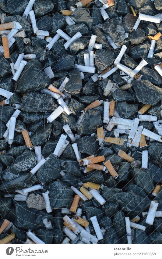 Smoking Trash Cigarette Environmental pollution Remainder Poison Inattentive Throw away Dispose of Shackled Garbage dump