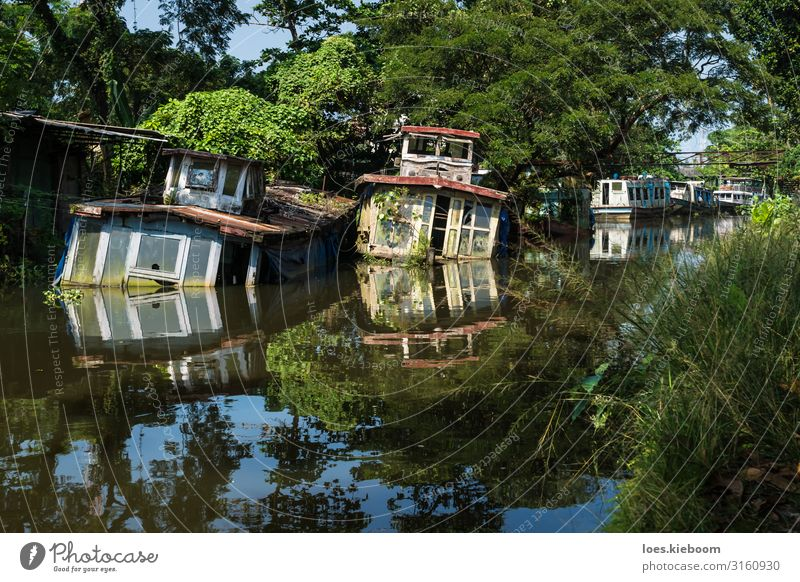 Sunken house boats in Kerala backwater Vacation & Travel Tourism Adventure Far-off places Sightseeing Nature Beautiful weather Exotic River bank Navigation