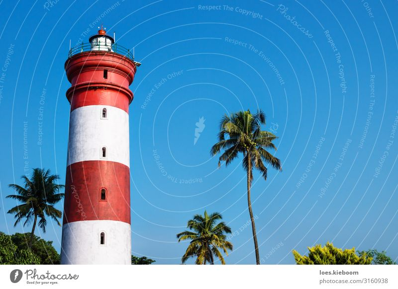 Alleppey Lighthouse, Kerala, India Vacation & Travel Tourism Adventure Far-off places Sightseeing City trip Summer Beach Nature Sun Sunlight Foliage plant