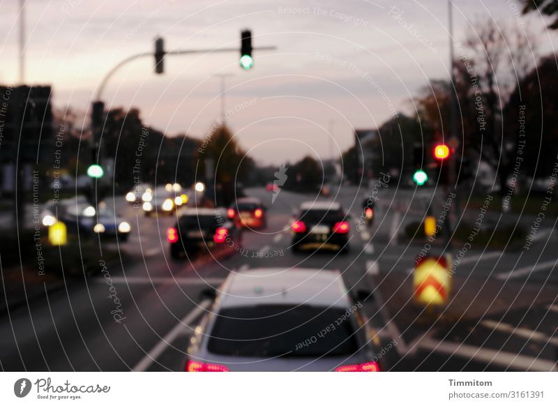 Vacation & Travel Town Street Emotions Trip Transport Driving Vehicle Traffic light Night sky