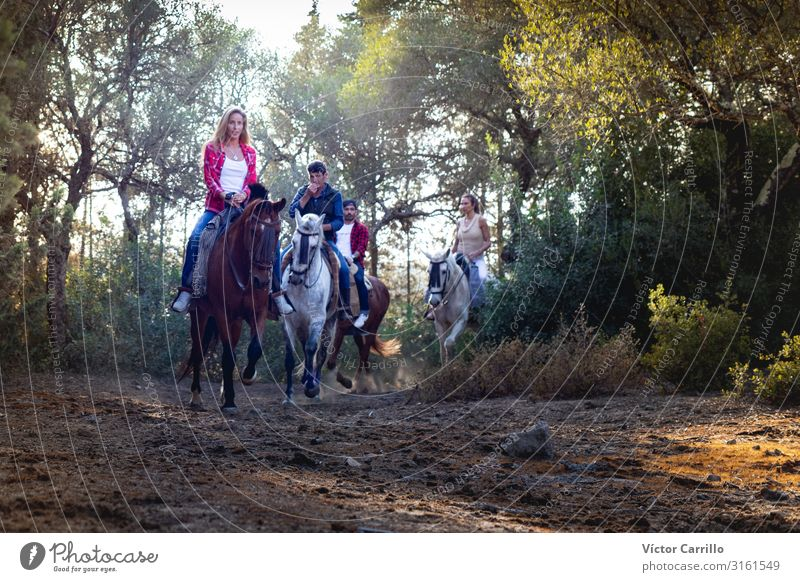 A group of people riding a horse in the nature Lifestyle Elegant Style Leisure and hobbies Ride Human being Masculine Feminine Young woman Youth (Young adults)