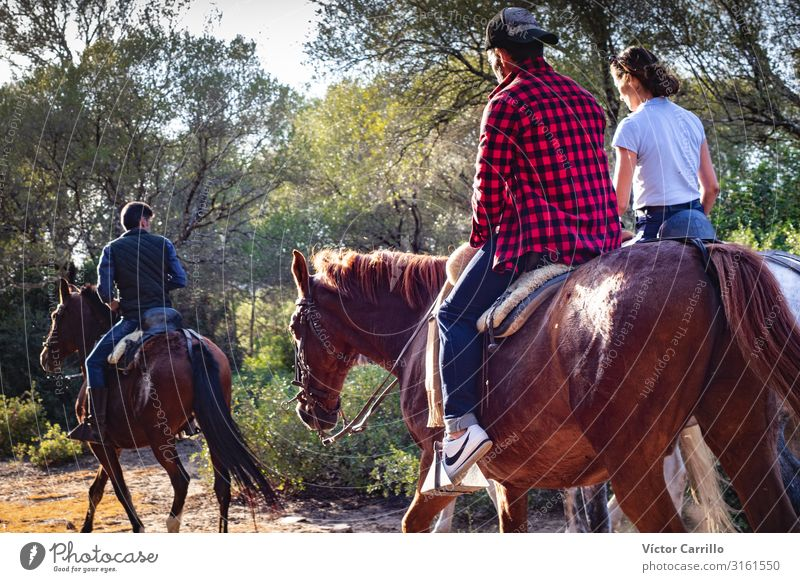 A couple of a man and a woman riding a horse Lifestyle Elegant Style Human being Masculine Feminine Young woman Youth (Young adults) Young man Woman Adults Man