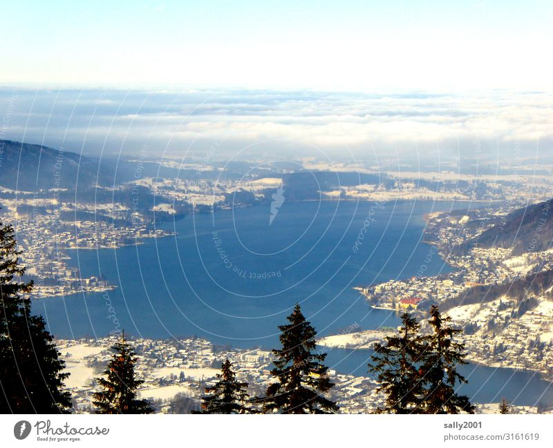 weekend outlook... Landscape Winter Tree Alps Mountain Lake Tegernsee Relaxation Vacation & Travel Freedom Leisure and hobbies Horizon Far-off places Bavaria