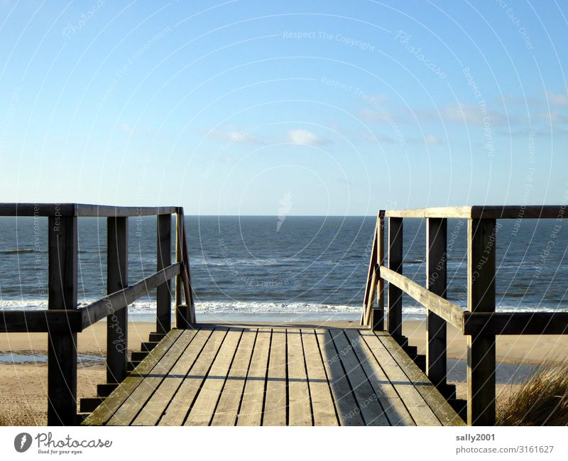 farsighted | to the horizon... Sky Beautiful weather Waves Coast Beach North Sea Ocean Stairs Bridge railing Handrail Wood Far-off places Free Maritime