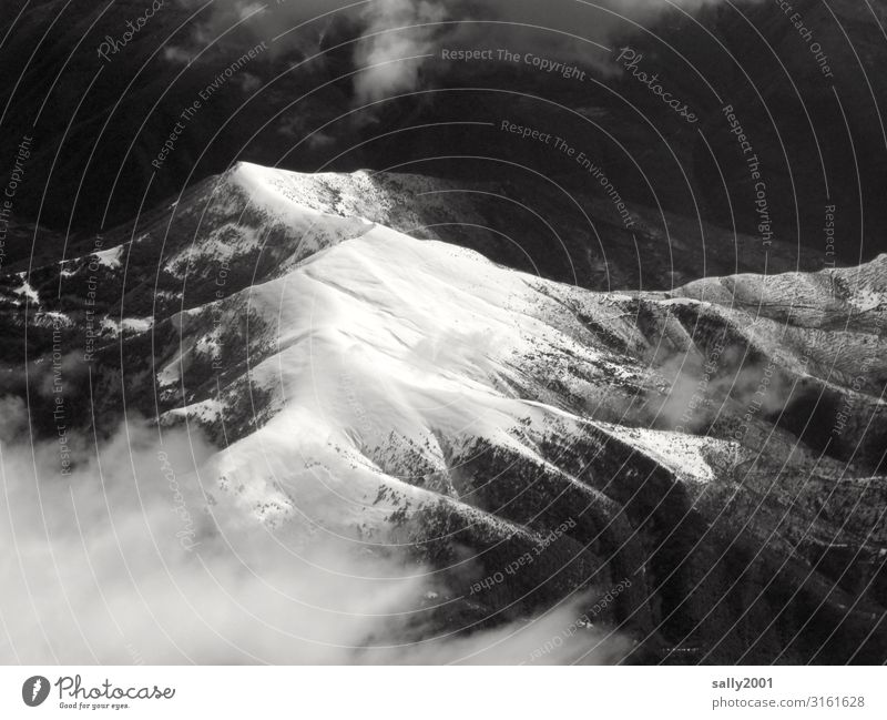 white peaks... Peak Snowcapped peak Mountain Pyrenees Winter Black & white photo View from the airplane High mountain region Loneliness Ridges timber line