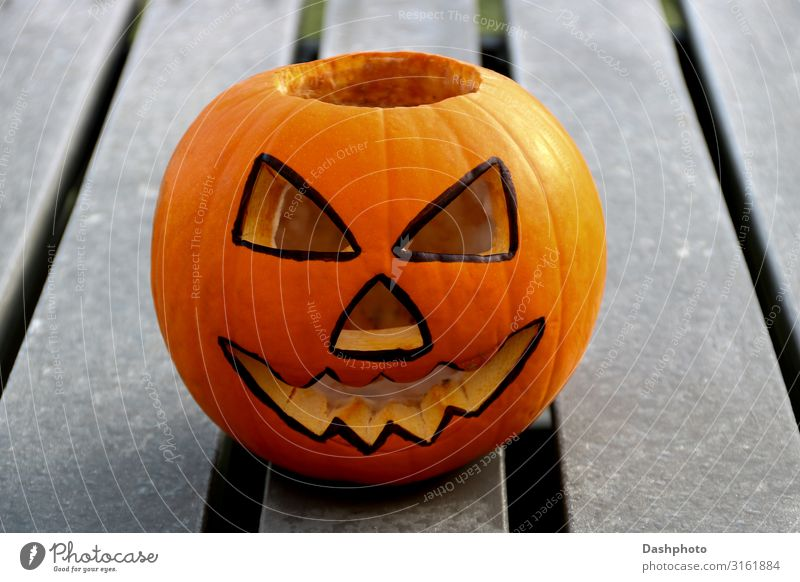 Carved Halloween Pumpkin on a Frosty Picnic Bench Food Vegetable Fruit Face Leisure and hobbies Decoration Feasts & Celebrations Hallowe'en Autumn Wood Ornament