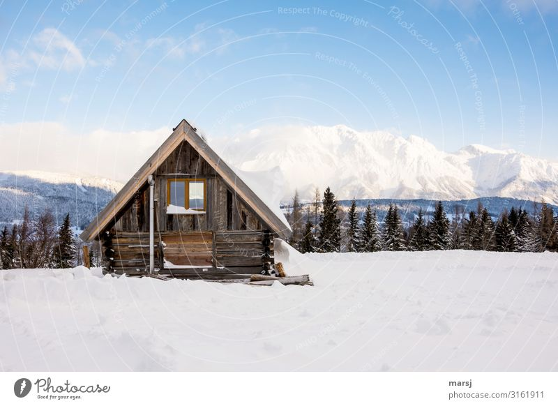 winter vacation Vacation & Travel Tourism Adventure Winter Snow Winter vacation Beautiful weather Ice Frost Alps Mountain Snowcapped peak Hut Simple Cold Blue