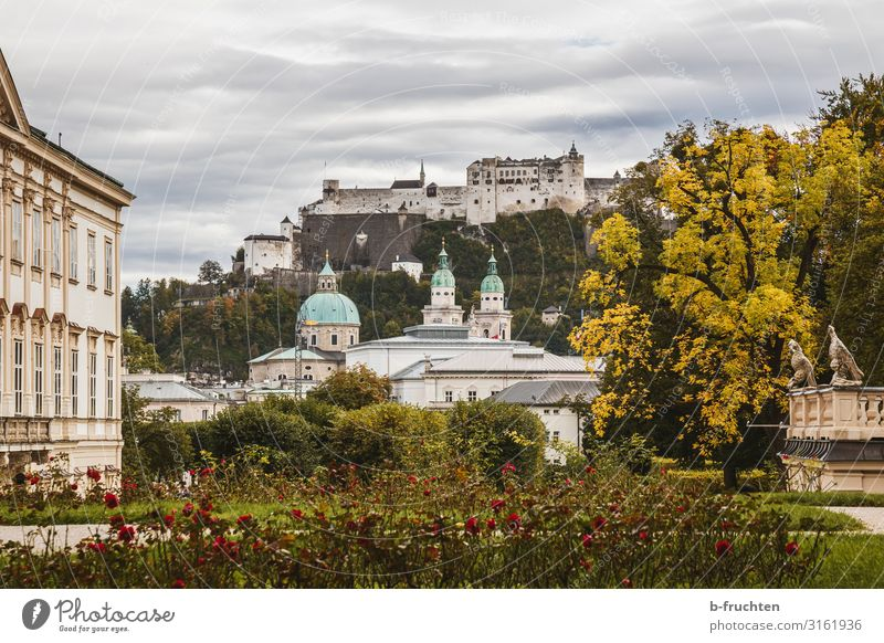 Salzburg city view Tourism Clouds Autumn Tree Bushes Rose Garden Park Town Old town Church Dome Castle Manmade structures Building Architecture Authentic