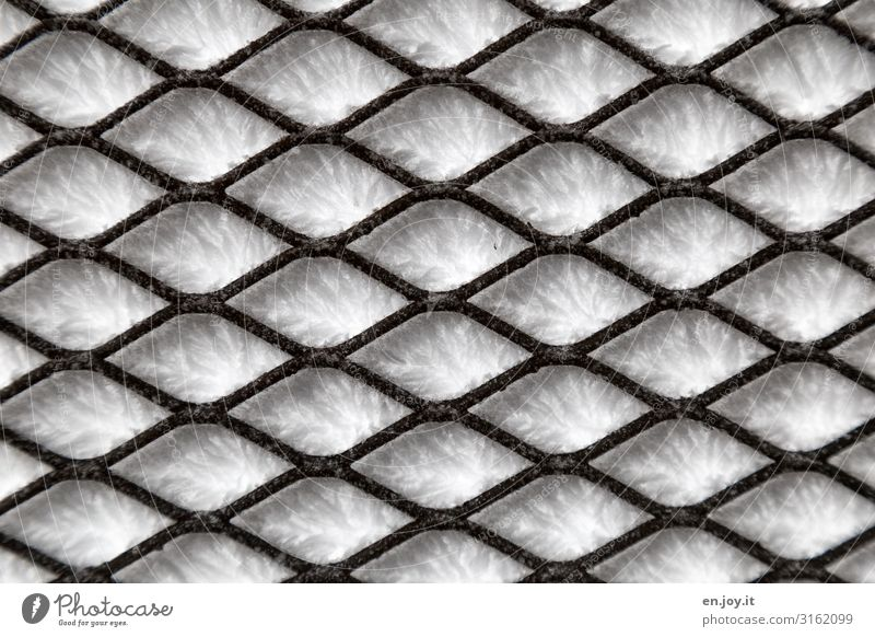 behind bars Winter Ice Frost Snow Cold Ice crystal Grating Metal grid Colour photo Subdued colour Exterior shot Close-up Detail Abstract Pattern