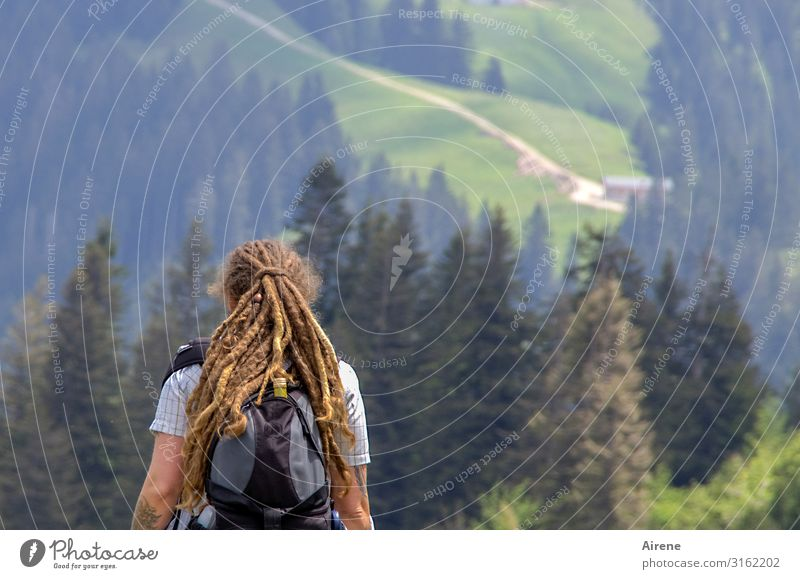 We're gonna continue over there with AST6 Inntal. Trip Mountain Hiking Woman Adults Upper body 1 Human being 30 - 45 years Landscape Beautiful weather Forest