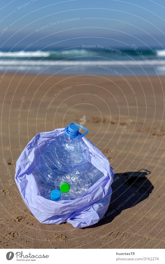 plastics cleaning the beach Bottle Lifestyle Beach Ocean Woman Adults Hand Environment Nature Landscape Sand Coast Dog Package Plastic Sustainability Clean Blue
