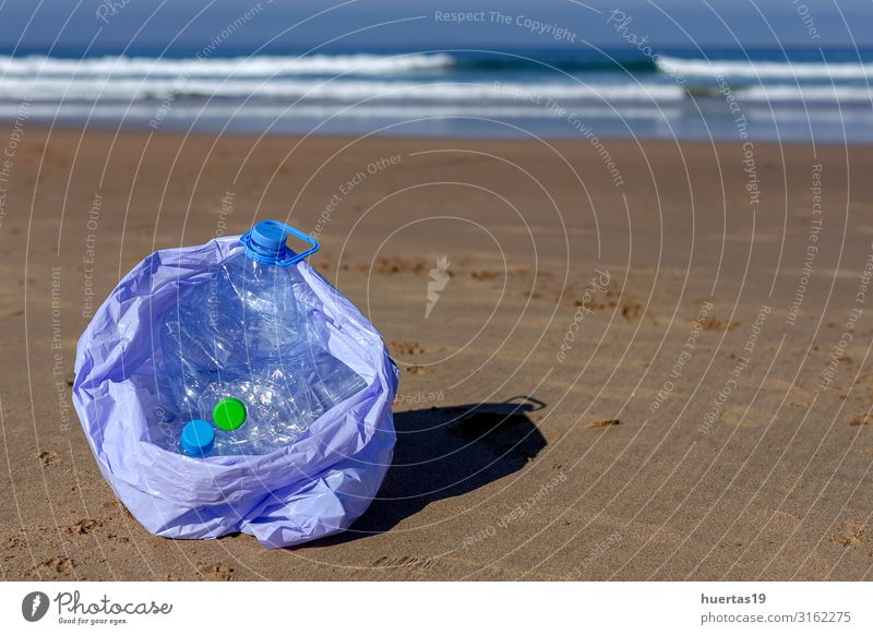 trash and plastics cleaning the beach Bottle Lifestyle Beach Ocean Woman Adults Hand Environment Nature Landscape Sand Coast Dog Package Plastic Sustainability