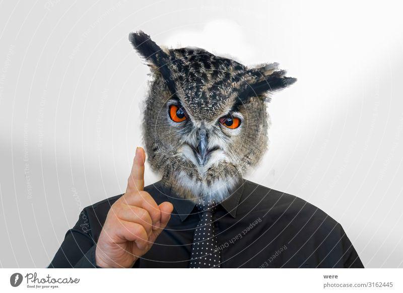 Man with owl head raises his finger Androgynous Head Fingers 1 Human being Animal Wild animal Bird Owl birds Creepy Astute Smart Inspiration Reliability