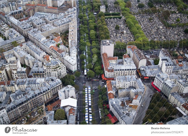 Vacation & Travel Town Street Life Environment Building Exceptional Stone Work and employment Living or residing Flat (apartment) Park Modern Communicate Power