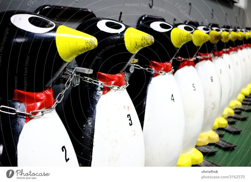 Ice rink Penguin Driving aid Fitness Leisure and hobbies Ice stadium ice sports Winter Winter vacation Sports Winter sports Ice-skating ice sports hall