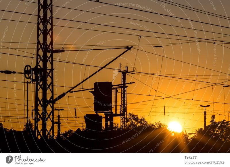 Sunset track systems Transport Means of transport Traffic infrastructure Rail transport Train travel Railroad Esthetic Overhead line Colour photo Exterior shot