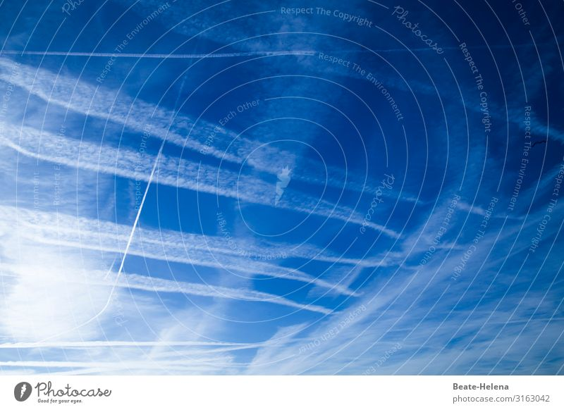 heavenly Sky Clouds Weather Beautiful weather Pattern Line Stripe Sign Observe Discover Illuminate Looking Esthetic Authentic Exceptional Elegant Wild Blue