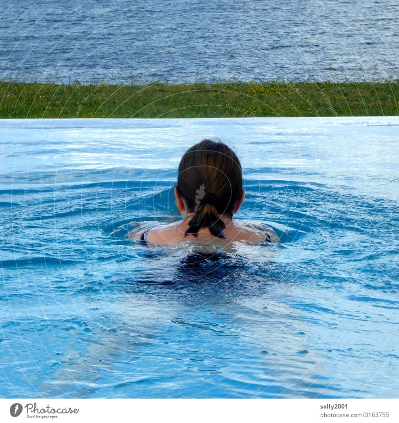 The bathing season is open... Woman be afloat bathe pool swimming pool Infinity Pool Blue Summer refresh refreshingly Ocean Vantage point outlook Swimmer