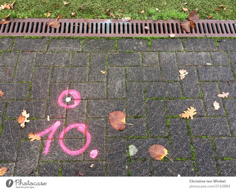 pink 10 on paved path Grass Leaf Lanes & trails Stone Metal Digits and numbers Signs and labeling Graffiti Line Circle Cool (slang) Sharp-edged Pink Colour
