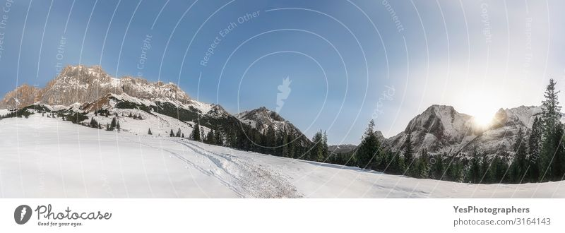 Winter panorama with snowy Alps mountains. Snow-covered nature Sun Mountain Nature Landscape Climate change Weather Beautiful weather Peak Bright White