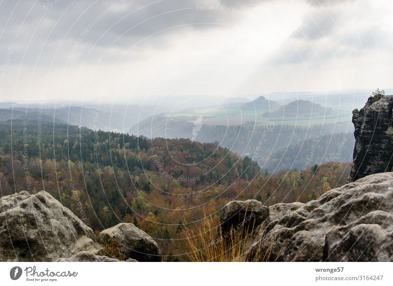 View from the Breite Kluft over the Elbe valley to the Zirkelstein and the Kaiserkrone Autumn Saxon Switzerland Elbsandstone mountains Landscape Mountain