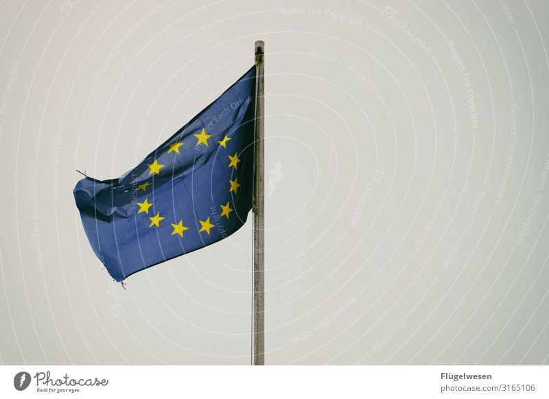 Europe European flag Europe Day Star (Symbol) Flag Blow Wind Society Americas Town Countries Politics and state Together Attachment Interlaced