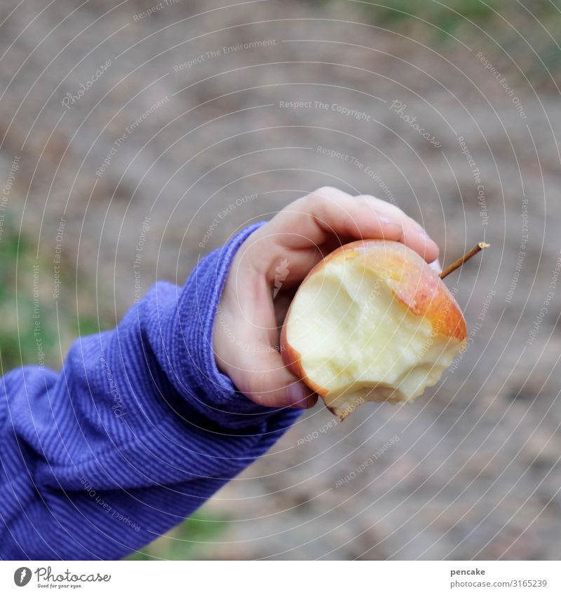 noise | cord Apple Fruit Red Nutrition Healthy Close-up Fresh Organic produce Food Juicy Child Children`s hand Shallow depth of field Sweet Colour photo