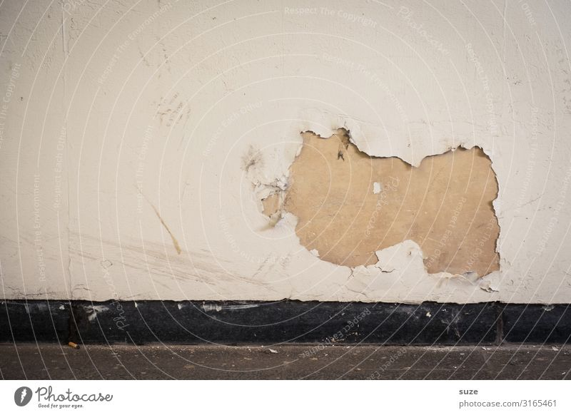 domestic pig Häärbärt Art Work of art Wall (building) Facade Concrete Old Authentic Dirty Funny Stagnating Decline Past Transience Dismantling Obscure Plaster