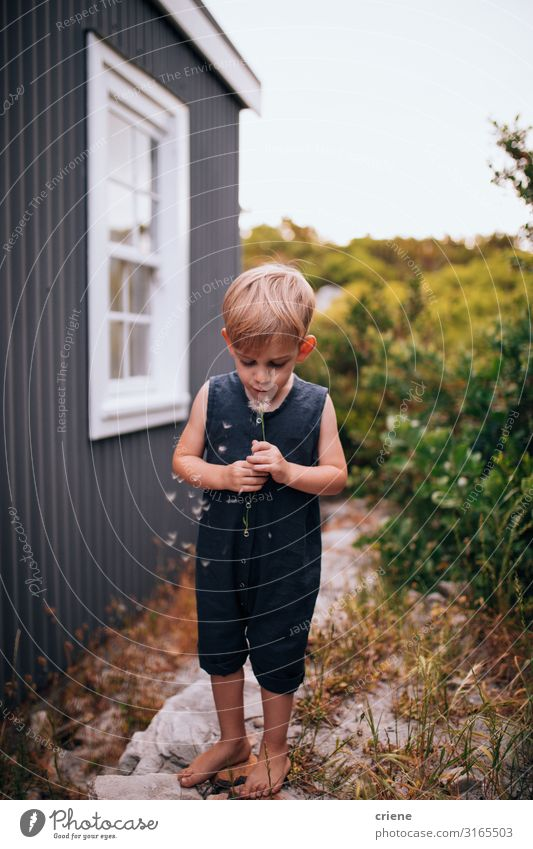 boy in front of a house blowing dandelion Joy Happy Playing Summer Garden Child Human being Toddler Boy (child) Woman Adults Family & Relations Infancy Nature
